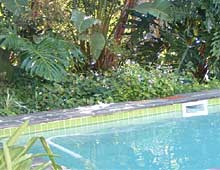 Hillview Self-Catering Apartments Knysna, Western Cape, South Africa