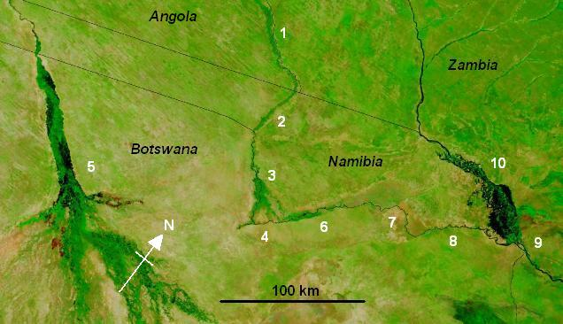 Map of the Cuando-Linyanti-Chobe river system in the region of Namibia's Caprivi Strip based on a NASA satellite photo (note orientation with north-west at top). Water shows black. 1 The Cuando River; 2 Caprivi Strip; 3 Mudumu National Park and Lianshulu Lodge, the end of the Linyanti Swamp; 4 Linyanti Swamp and Mamli National Park, where a ridge of Kalahari sand blocks flow to the south-east; 5 Okavango River and delta which sinks into the Kalahari sands; 6 Linyanti River; 7 Lake Liambezi (dry when photo was taken); 8 Chobe River; 9 Confluence of Chobe and Zambezi at Kazungula; 10 Zambezi and Caprivi Swamps were experiencing an extreme flood at the time of the photo. Credit: Jacques Descloitres, MODIS Rapid Response Team, NASA/GSFC