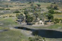 Seba Camp Wilderness Safaris, Botswana