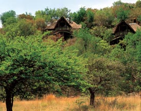 Tshukudu Bush Lodge, South Africa