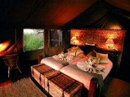 Tubu Tree Camp Wilderness Safaris Botswana room